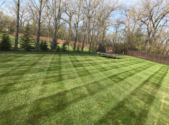 Valley Green and Associates Lawn Service Moorhead Minnesota