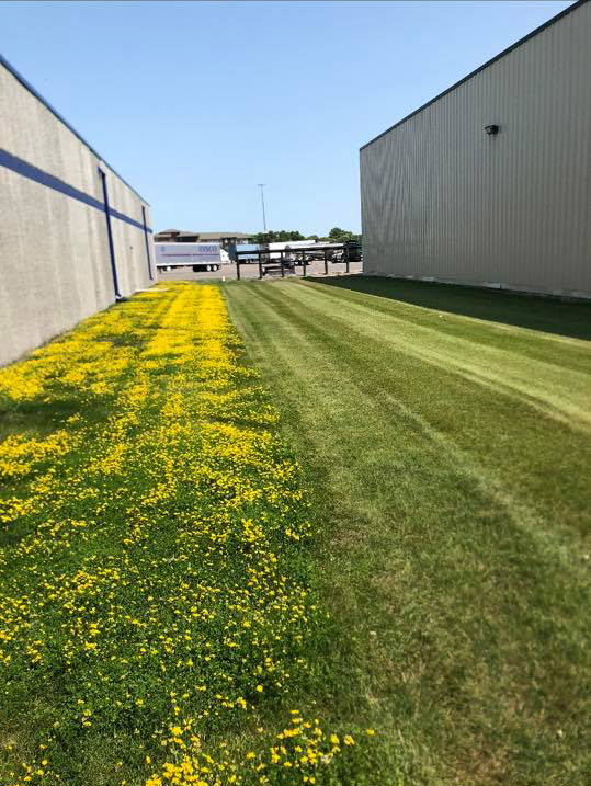Fertilizer for your home or business keeps your lawn looking great valley green and associates